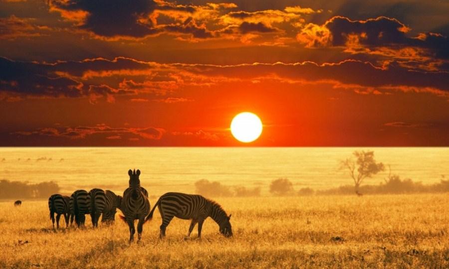 africa_tourism